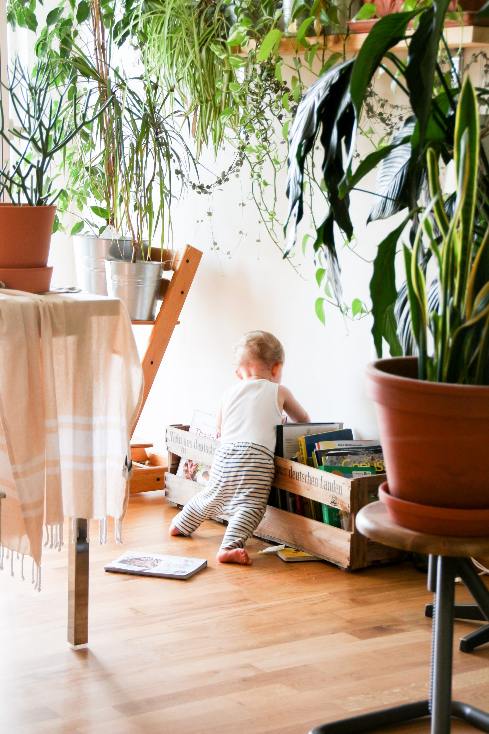 5 Baby Sleep Consultant Red Flags
